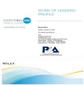 image work of leaders sample report